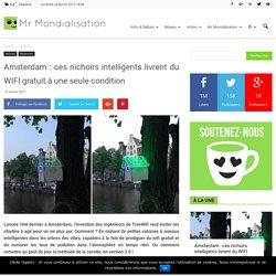 Amsterdam : ces nichoirs intelligents livrent du WIFI gratuit à une seule condition