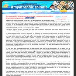 Amyotrophie-spinale.com : Chirurgie du gène dans l'amyotrophie spinale - Réduction des symptômes de la maladie chez l'animal
