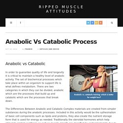Anabolic Vs Catabolic Process
