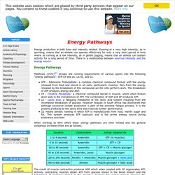Anaerobic and aerobic Energy Pathways