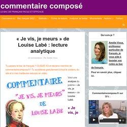 """""""Je vis, je meurs"""", Louise Labé : analyse"""