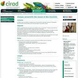 Analyse sensorielle des cacaos et des chocolats - CIRAD