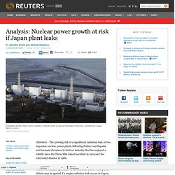 Analysis: Nuclear power growth at risk if Japan plant leaks