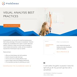 Visual Analysis Best Practices