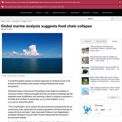 Global marine analysis suggests food chain collapse