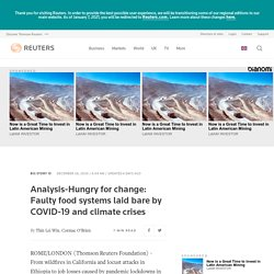 REUTERS 28/12/20 Analysis-Hungry for change: Faulty food systems laid bare by COVID-19 and climate crises