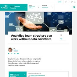 Analytics team structure can work without data scientists