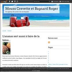 L'ananas sert aussi à faire de la bière... - Mouss Crevette et Bagnard Roger