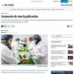 Anatomía de una legalización
