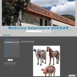 Anatomía - Medicina Veterinaria UDENAR