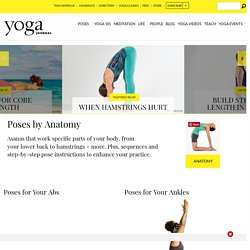 Yoga Poses by Anatomical Focus - How Yoga Benefits Different Parts of the Body