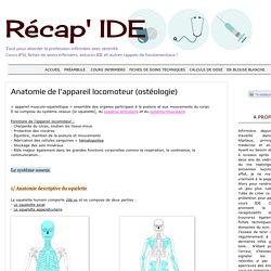 Récap' IDE: Anatomie de l'appareil locomoteur (ostéologie)