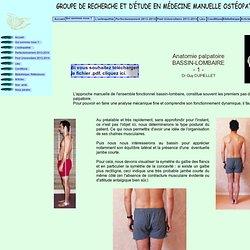 anatomie palpatoire bassin