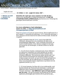le Selbst +/- (2) - angle de vision 360° - ANATOMISK