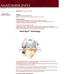 Hemi-Sync - ANATOMISK