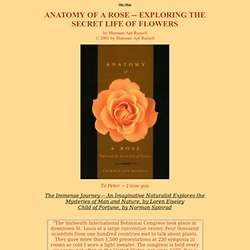 Anatomy of a Rose -- Exploring the Secret Life of Flowers, by Sharman Apt Russell