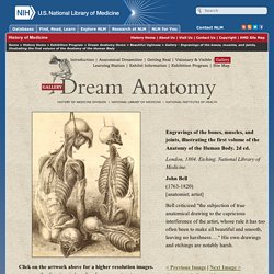 Dream Anatomy: Gallery: John Bell: Engravings of the bones, muscles, and joints...