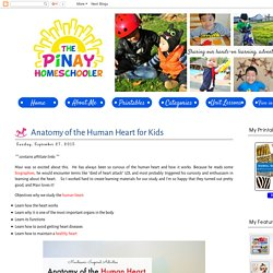 Anatomy of the Human Heart for Kids