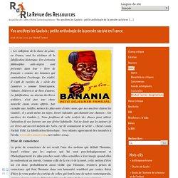 Vos ancêtres les Gaulois : petite anthologie de la pensée raciste en France