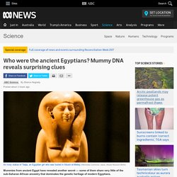 Who were the ancient Egyptians? Mummy DNA reveals surprising clues - Science News - ABC News