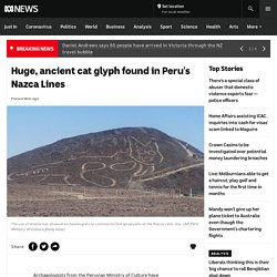 Huge, ancient cat glyph found in Peru's Nazca Lines - ABC News