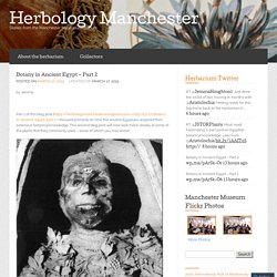Botany in Ancient Egypt – Part 2 « Herbology Manchester