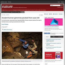 Ancient-human genomes plucked from cave dirt