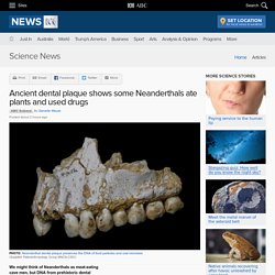 Ancient dental plaque shows some Neanderthals ate plants and used drugs - Science News