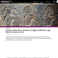 Ancient Teeth Show 'Invasion' of Egypt 3,600 Years Ago Was No Invasion at All