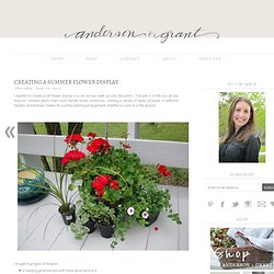 anderson + grant: Creating a Summer Flower Display