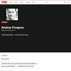 Andras Forgacs