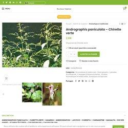 Graines d'Andrographis paniculata - Chirette verte - Boutique Végétale