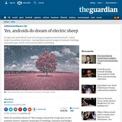 Yes, androids do dream of electric sheep