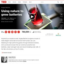 Angela Belcher: Using nature to grow batteries
