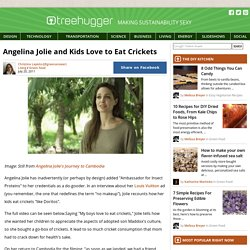 Angelina Jolie and Kids Love to Eat Crickets