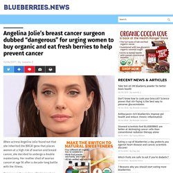 """Angelina Jolie's breast cancer surgeon dubbed """"dangerous"""" for urging women to buy organic and eat fresh berries to help prevent cancer"""