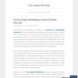 Cove Angels Breeding, Loyal Friends for Life