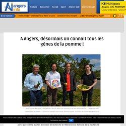 MY ANGERS 08/06/17 A Angers, désormais on connait tous les gènes de la pomme !