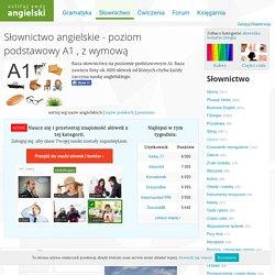 Słownictwo angielskie - poziom podstawowy A1 (zdjęcia, obrazki i wymowa) - Szlifuj swój angielski
