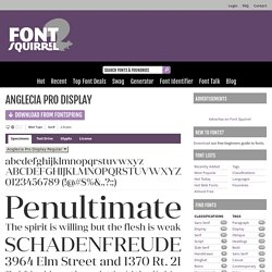 Anglecia Pro Display Font Free by Mint Type » Font Squirrel