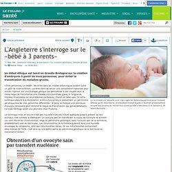 L'Angleterre s'interroge sur le «bébé à 3 parents»