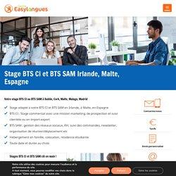 Stages BTS CI Angleterre, Irlande, Malte, Espagne - Centre Easylangues