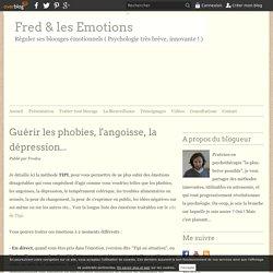 Guérir les phobies, l'angoisse, la dépression... - Fred & les Emotions