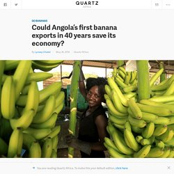 Could Angola's first banana exports in 40 years save its economy? — Quartz