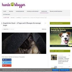 Ängstlicher Hund - 4 Tipps und 6 Übungen für weniger Angst - hundeblogger
