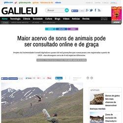 Maior acervo de sons de animais pode ser consultado online e de graça - Galileu