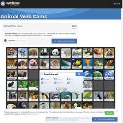 Animal Web Cams- Symbaloo Gallery