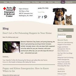 Berks Animal Emergency & Referral Center -