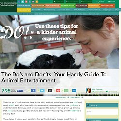 The Do's and Don'ts: Your Handy Guide To Animal Entertainment