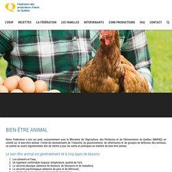 Bien-être animal - Fédération des producteurs d'oeufs du Québec
